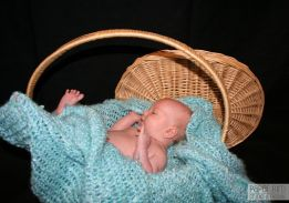 Baby in a Basket