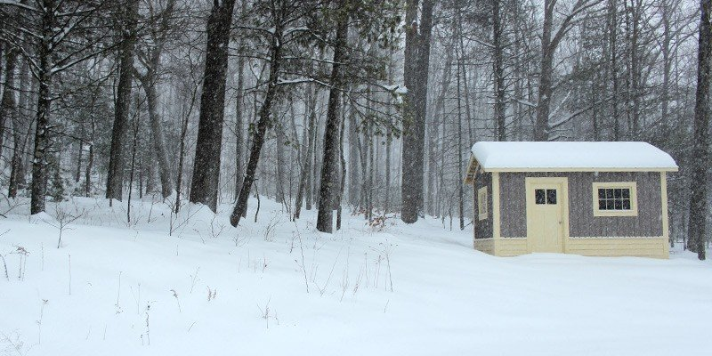 Tiny Shed Becomes Tiny Woodworking Shop